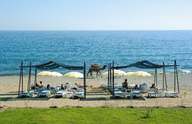 Turcja Alanya Alanya Vital Beach