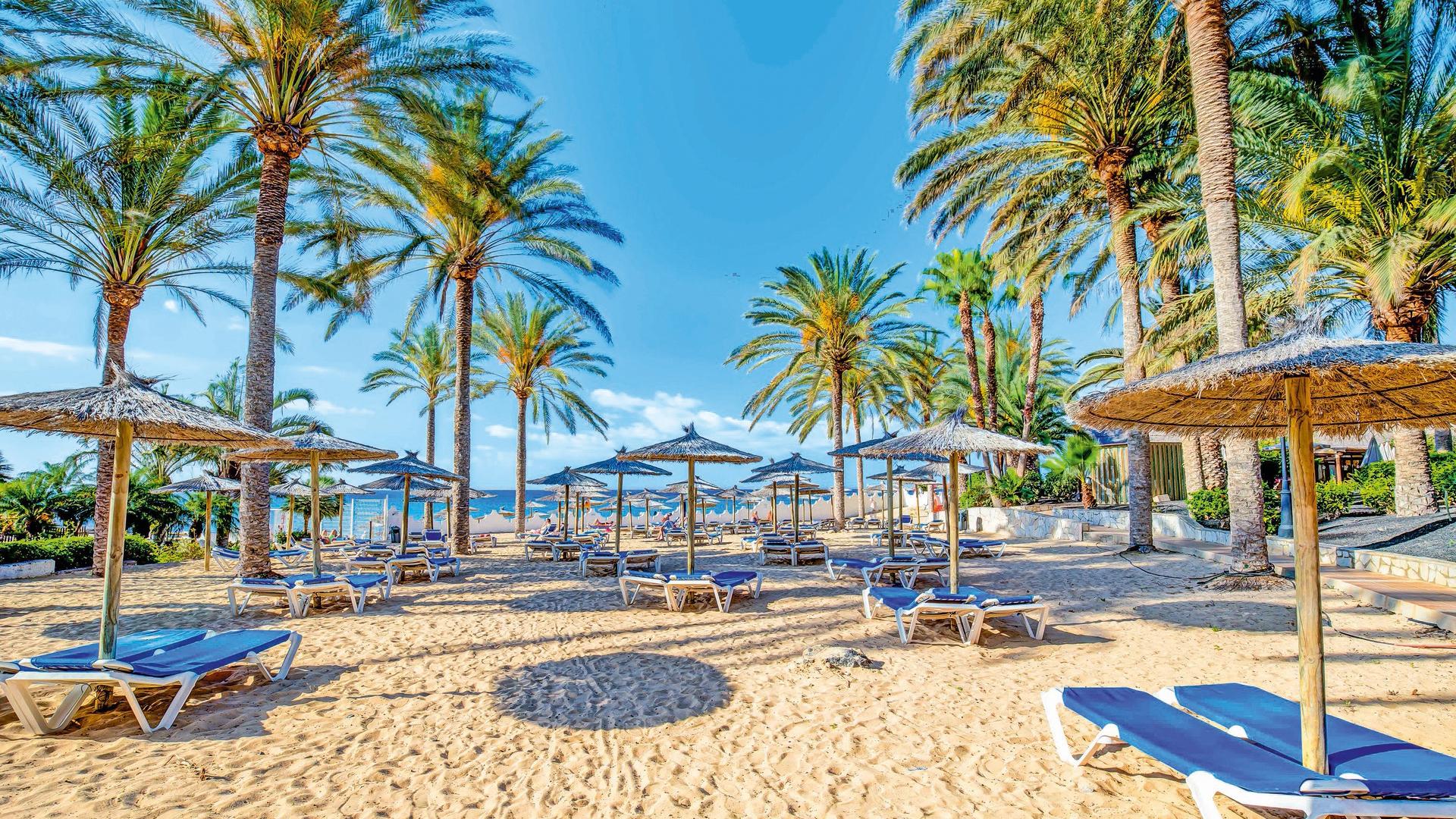 Costa Calma Beach Fuerteventura Pictures to pin on Pinterest